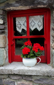 red sash window